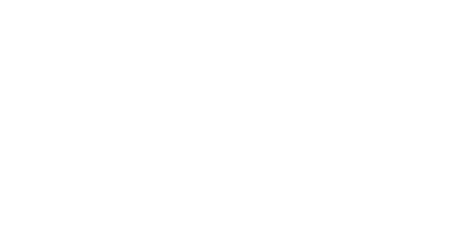 THE NEW VIBES 101